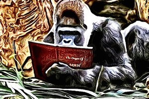 Check out Chris the Story Reading Ape